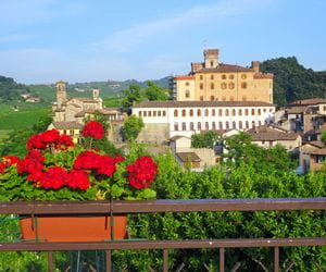 Wanderhighlight Barolo