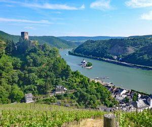 Hiking tour Rheinsteig with view to castle Gutenfels