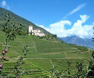 Old castles and green vineyards on the South Tyrol Wine Trail