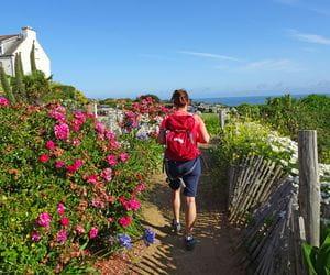 Wanderer auf der Grand Route, wunderschöne Blumenpracht