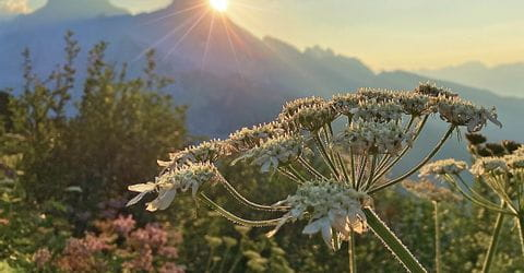 Sonnenaufgang in der Bergwelt