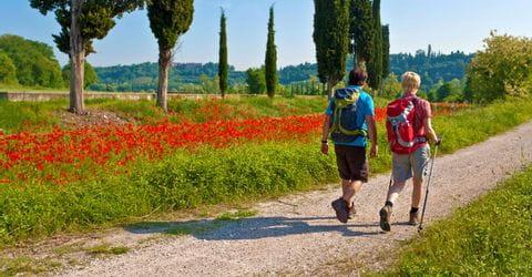 Wanderer in Südtirol zwischen Mohnblumen und Zypressen