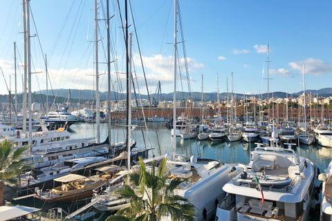 Palmas Hafen