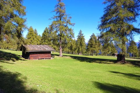 Almhütte in grüner Natur in Salten
