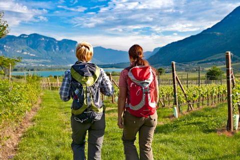 Wanderer auf schönen Weinwegen Richtung Kalterer See