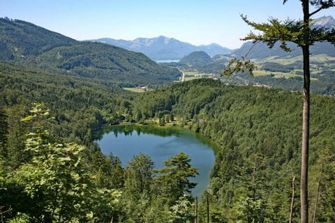 Charming view to lake Nussensee in the Salzkammergut region
