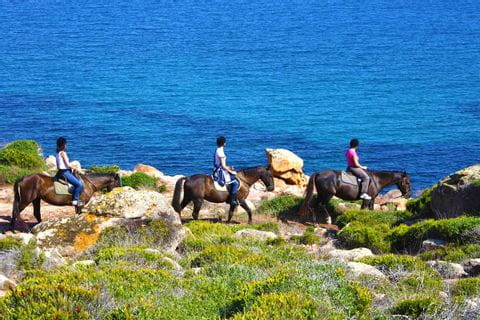 Hiking with horses at the Camí de Cavalls