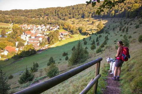 Wanderer mit Hund am Altmuehltal Panoramaweg