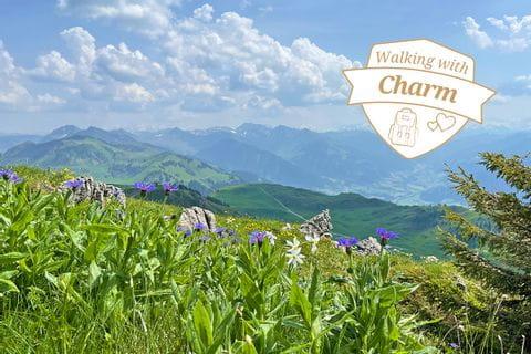 Magnificent hiking-rally around Kithbühel