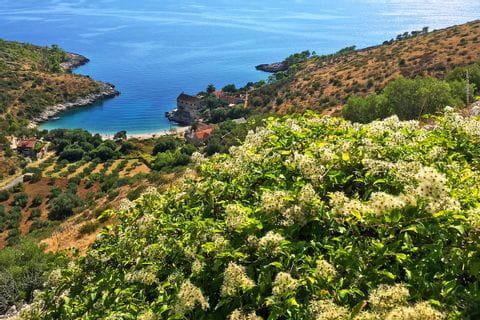 Küste einer kroatischen Insel