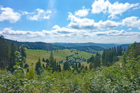 Gorgeous view at the Black Forest