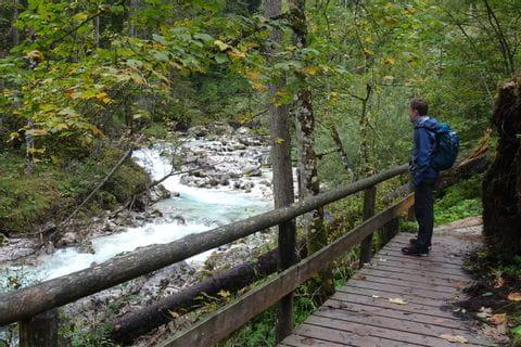 Wanderung durch den Zauberwald
