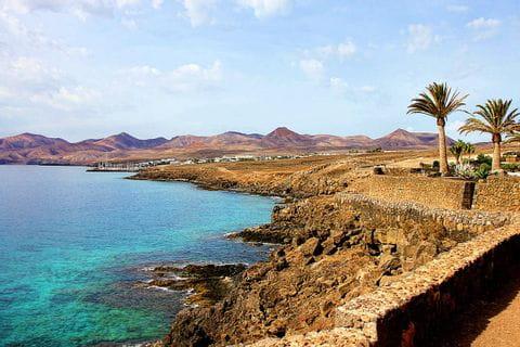 Seashore with palm trees on Lanzarote