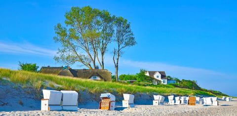 Strandkörbe am Wanderweg im Mecklenburger Fischland