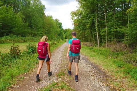 Wanderer auf Waldweg in Perl