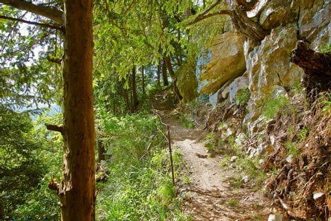 Wanderung entlang des Waldstätterweges
