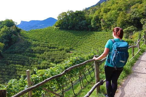 Hiker enjoys views of mountains and vineyards