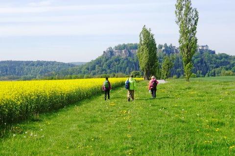 Wanderer in Richtung der Festung Knigstein