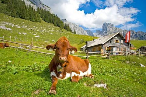 Idyllic alpine scenery in the Tennengebirge region