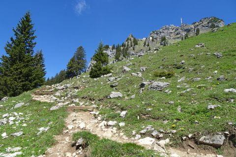 steiniger guter Wanderweg auf den Wendelstein, Blick auf den Gipfel