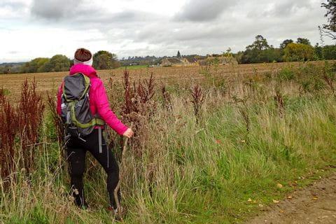 Wanderer am Weg durch traumhafte Landschaft