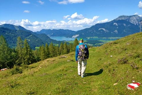 Hikers on the alpine pasture hike in the Salzkammergut