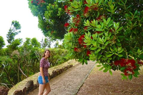 Wanderin auf den Azoren