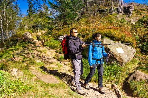 Wanderer auf guten Waldwanderwegen