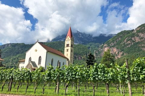 Idyllic church surrounded by vines