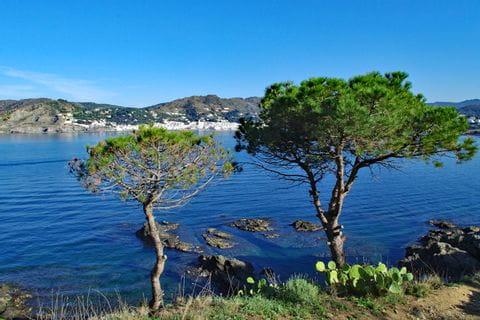 Wonderful hiking paths along the coast
