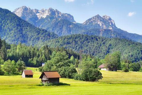 Wiesenlandschaft mit Bergpanorama