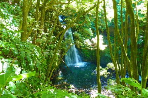 Wasserfall in Salto do Prego auf den Azoren