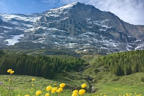 View at the Eiger