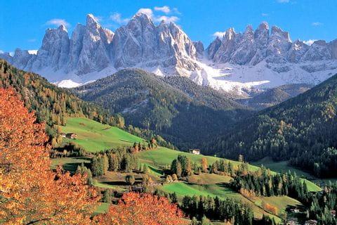 Sweet chestnut walk with view to mountain Geislerspitzen