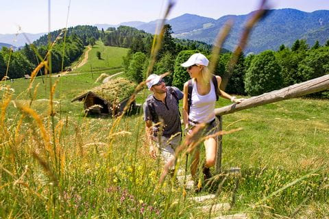 Breath-taking hiking paths through meadows and fields