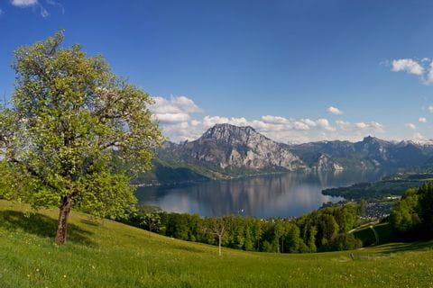 Blick auf den Traunsee mit Bergpanorama