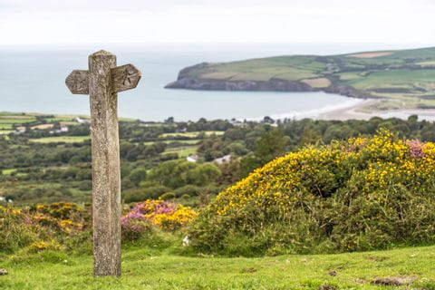 Hiking path on the coastal path in Pembrokeshire Wales