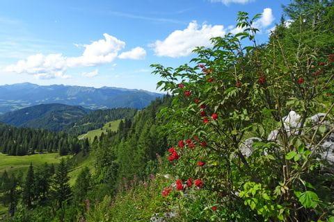View of the Tennengebirge