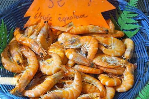 Meeresfrüchte in Kroatien