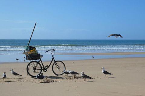 Fahrrad am Sandstrand der Algarve