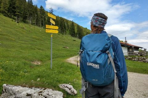 Hiker at the Salzalpensteig