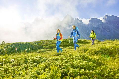 Almwiese am Innsbruck Trek