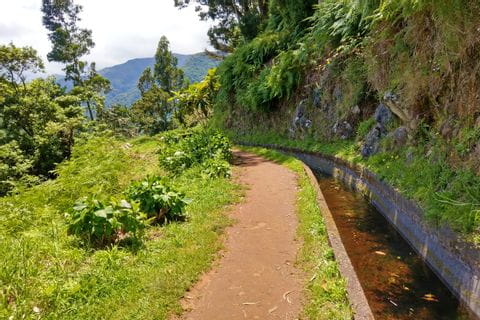 Unique hiking trails along the Levada channels