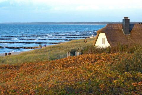 Reetdachhaus an der Ostsee