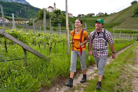 Relaxed hikers along the vineyards to the city of Nals