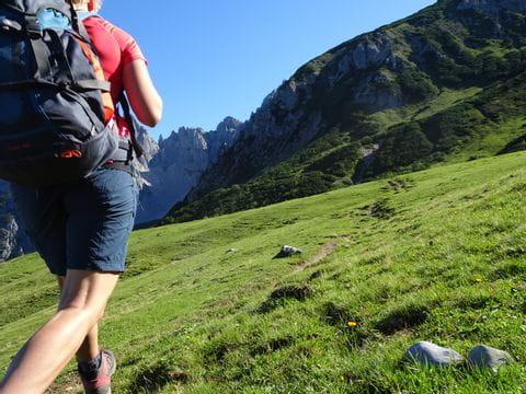 Wanderer auf dem Gosaukamm