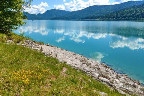 Idyllisches Seeufer in Bayern