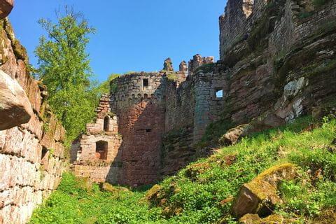 Kulturelles Highlight im Elsass: Burg Ruinen