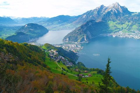 Hiking panorama at Lake Lucerne