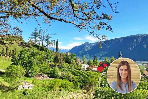 Verenas favourite hiking tours in autumn